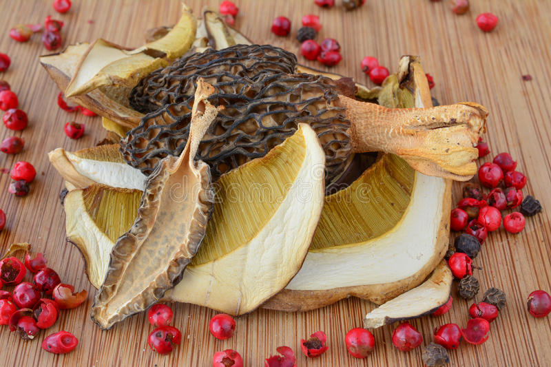 Mixed dried Cep and Morel mushrooms royalty free stock images