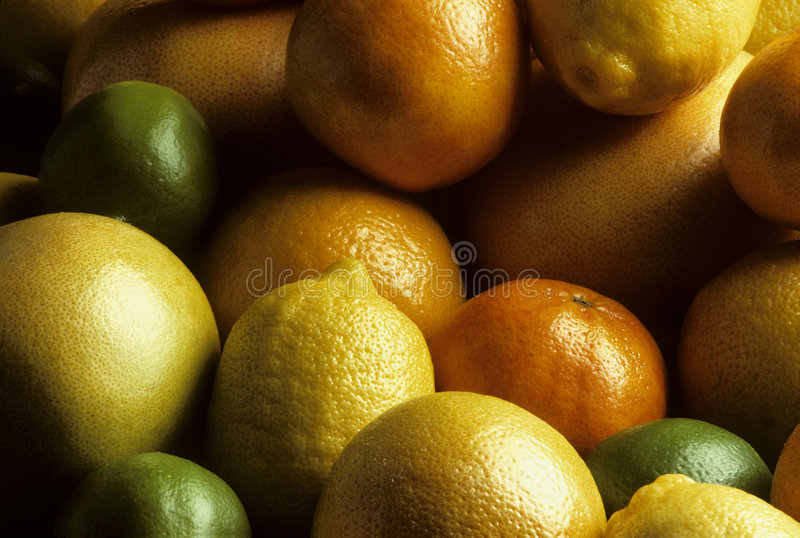 Mixed fresh citrus fruit. A variety of mixed fresh citrus fruit royalty free stock images
