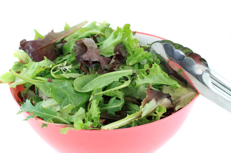Download Mixed Greens For Salad Stock Photo - Image: 26226240