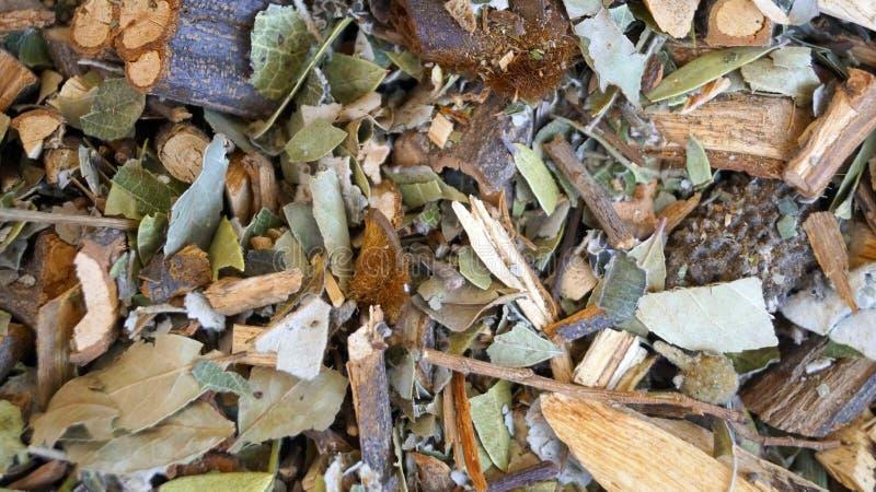 Mixed herbs stock photography