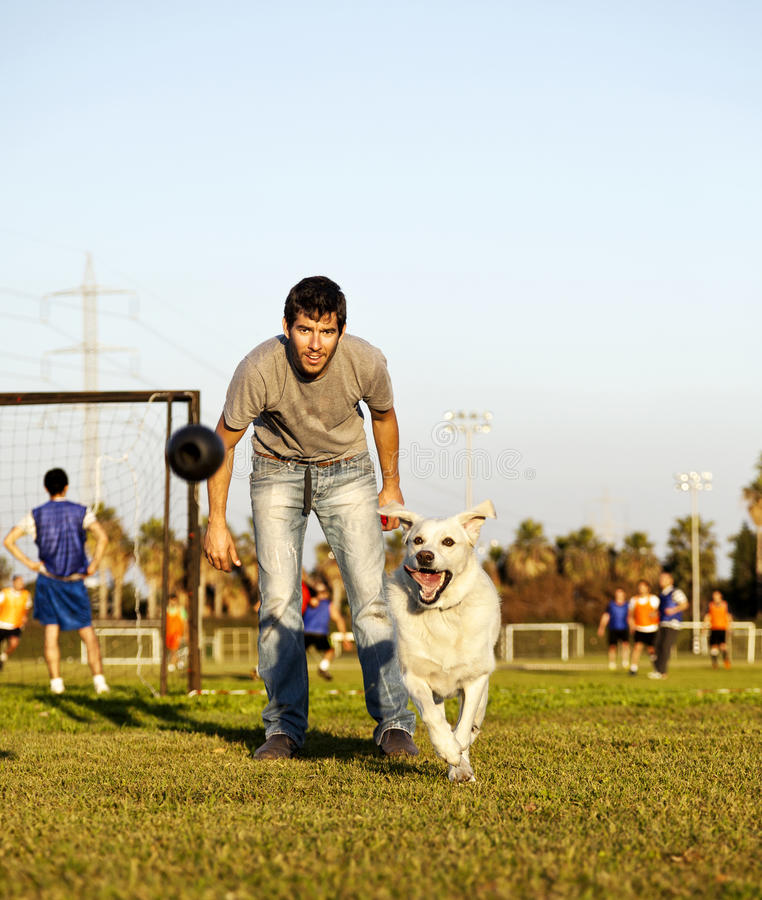 Download Labrador And Trainer With Dog Chew Toy At Park Stock Photo - Image: 30140854