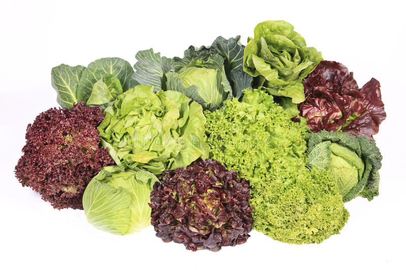 Mixed lettuce vegetables royalty free stock photos