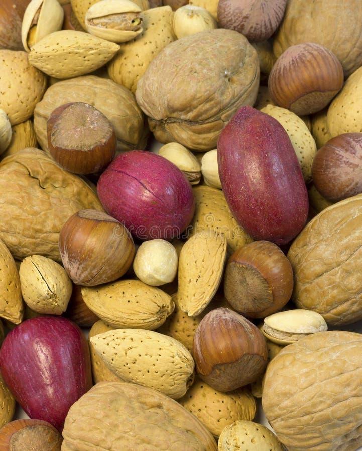 Free Mixed Nuts Royalty Free Stock Photos - 29834348