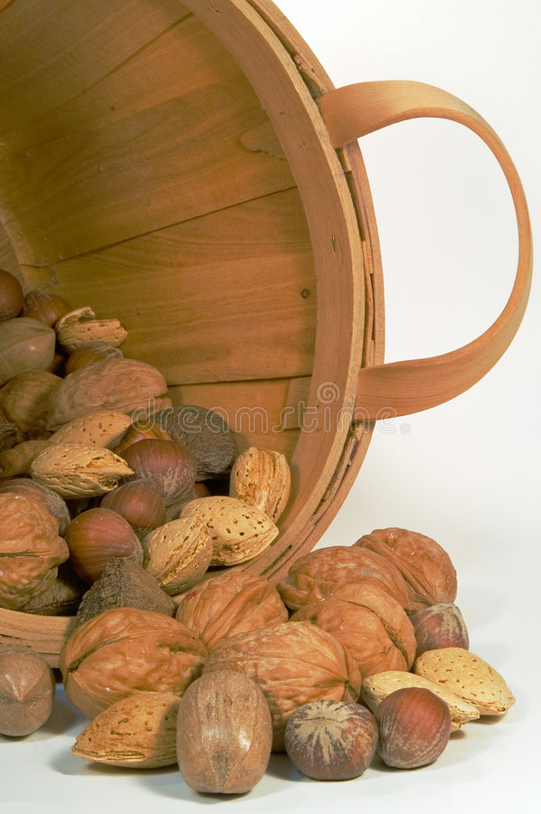 Mixed Nuts in a Bucket. Mixed nuts spilled from a bucket stock photography