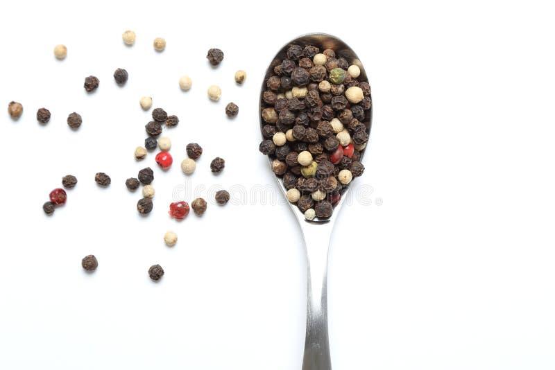 Mixed pepper corns stock image