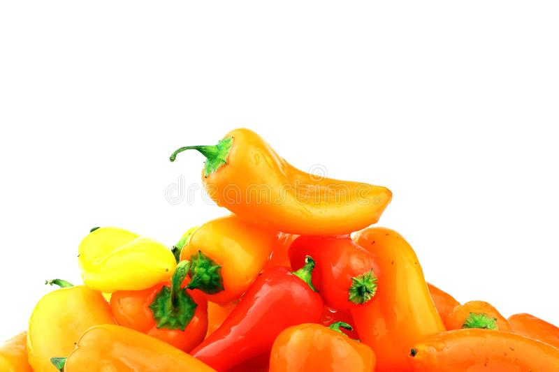 A mixed pile of multi-colored, small, sweet peppers royalty free stock photo