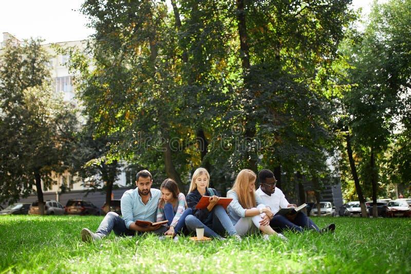 Mixed-race小组学生一起坐大学绿色草坪  库存图片