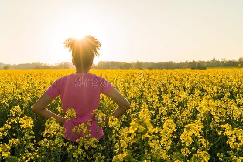 Mixed Race African American Girl Teenager Standing In Yellow Flowers. Outdoor beautiful rear view in golden evening sunshine of fit healthy and happy mixed race royalty free stock photo