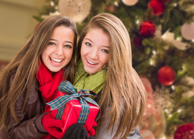 Mixed Race Young Adult Females Holding A Christmas Gift In Front. Of Decorated Tree stock image