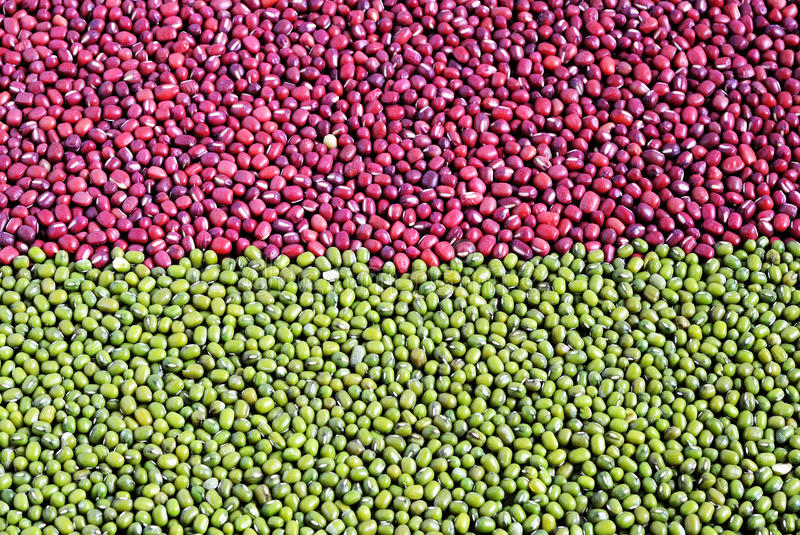 Mixed red adzuki beans and green mung beans royalty free stock photography