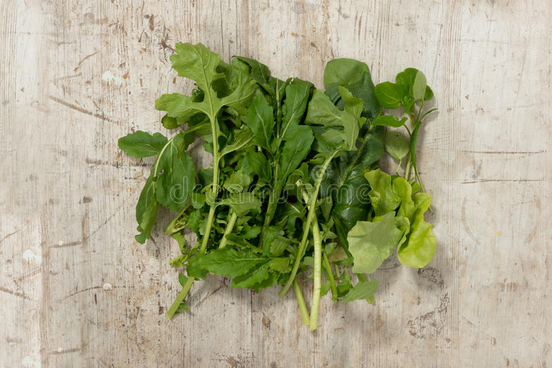 MIxed Salad Greens on a Wooden Surface stock photo