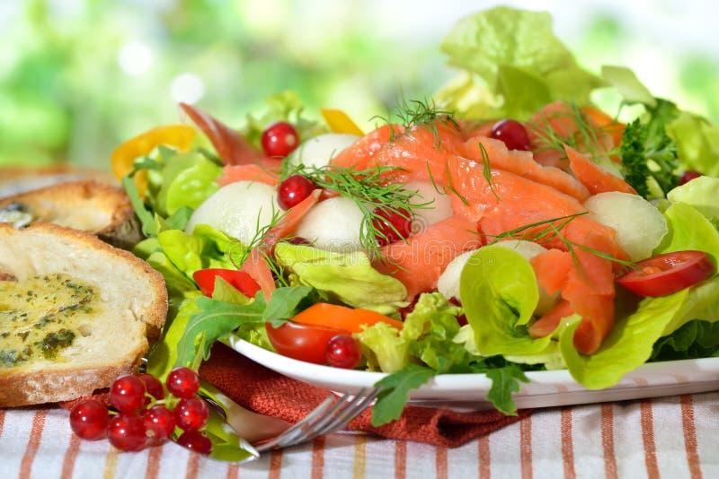 Mixed salad with salmon royalty free stock photos