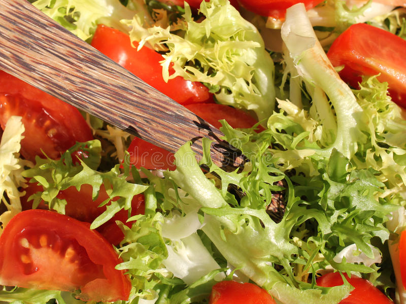 Download Mixed salas stock photo. Image of salad, green, health - 22365518