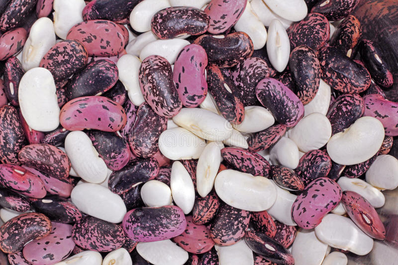 Mixed Scarlet Runner Beans Royalty Free Stock Photos