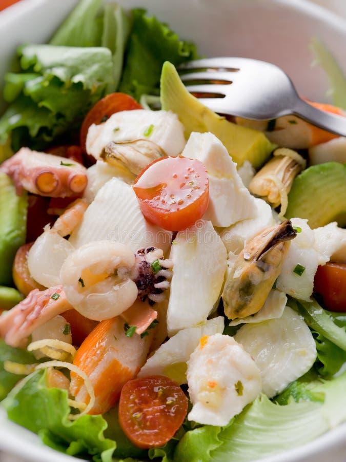 Mixed seafood salad with mozzarella royalty free stock photo