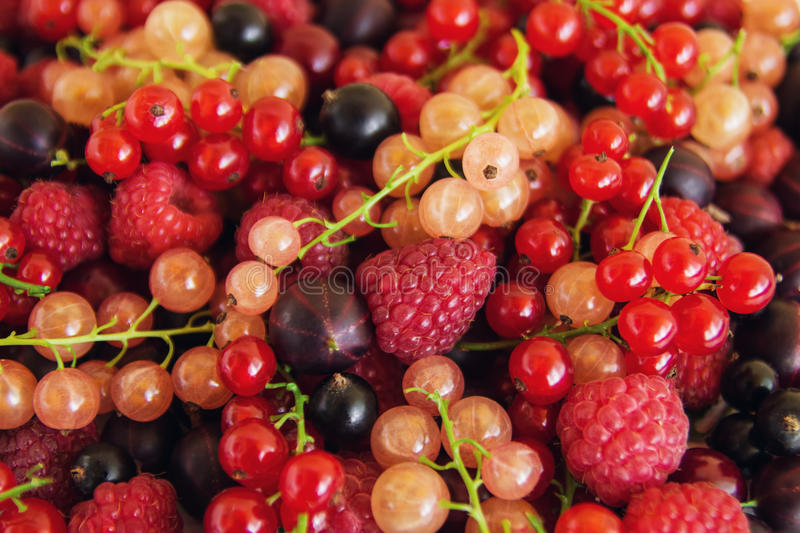 Mixed summer berries raspberry, blackcurrant, redcurrant, white currant, gooseberry, cherry on the white wooden background. Mixed summer berries raspberry stock photo