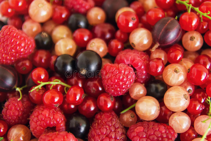 Mixed summer berries raspberry, blackcurrant, redcurrant, white currant, gooseberry, cherry on the white wooden background. Mixed summer berries raspberry stock image