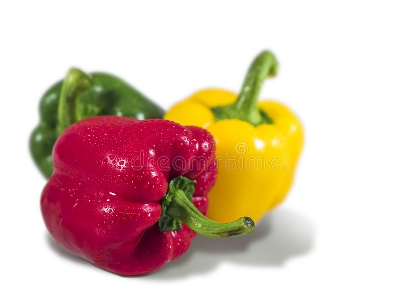 Mixed sweet peppers stock images