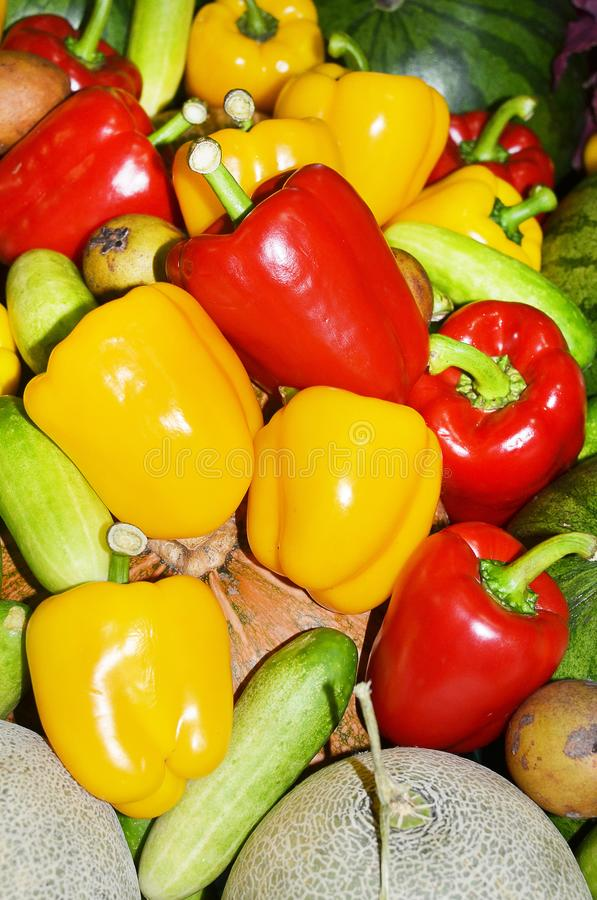 Red, green and yellow sweet bell peppers stock image