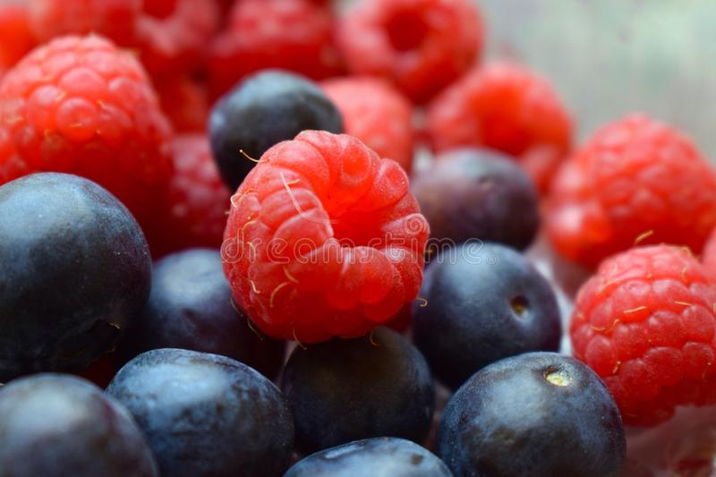 Mixture of raspberries and blueberries for a snack stock photo