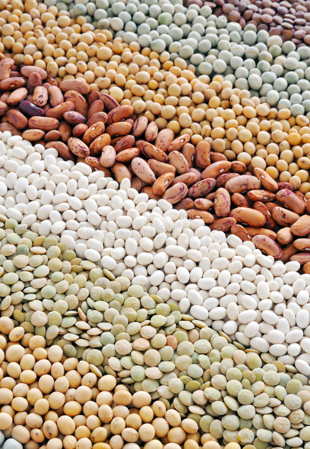 Free Mixture Of Dried Lentils, Peas, Soybeans, Beans Stock Photography - 17366842