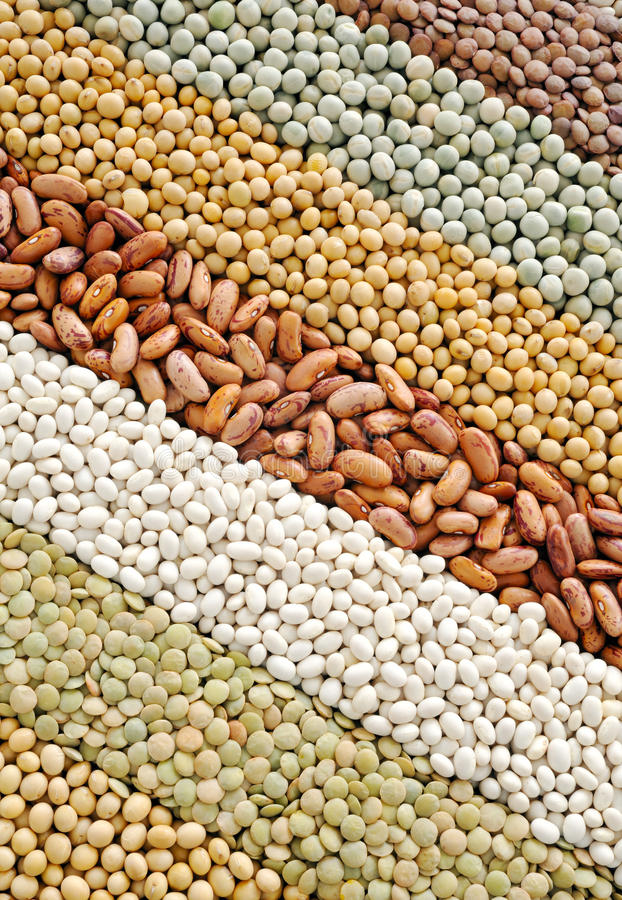 Free Mixture Of Dried Lentils, Peas, Soybeans, Beans Royalty Free Stock Photos - 17425658