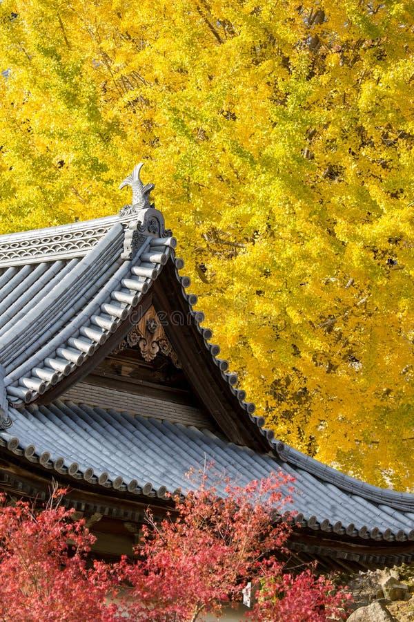 Miyajima images libres de droits