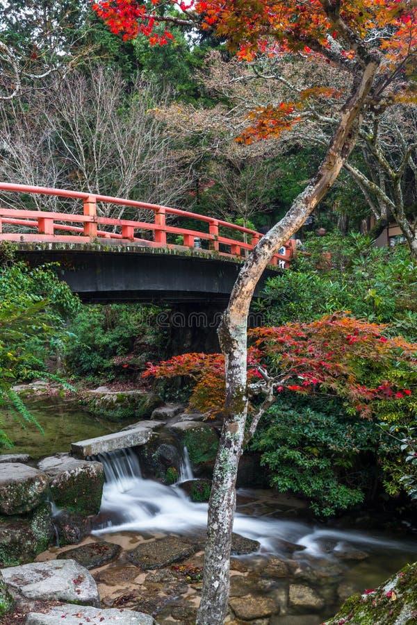 Miyajima, Hiroshima, Momijidani Park. Japan royalty free stock image