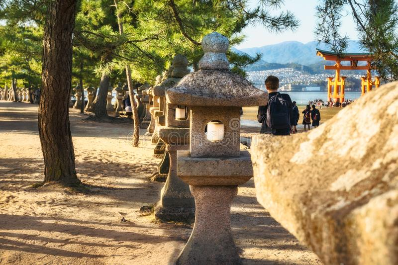 Row of stone lanterns among black pine trees with the famous Torii gate in the background. stock image