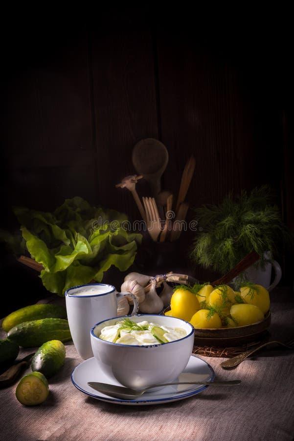 Mizeria é uma salada polonesa do pepino imagens de stock royalty free