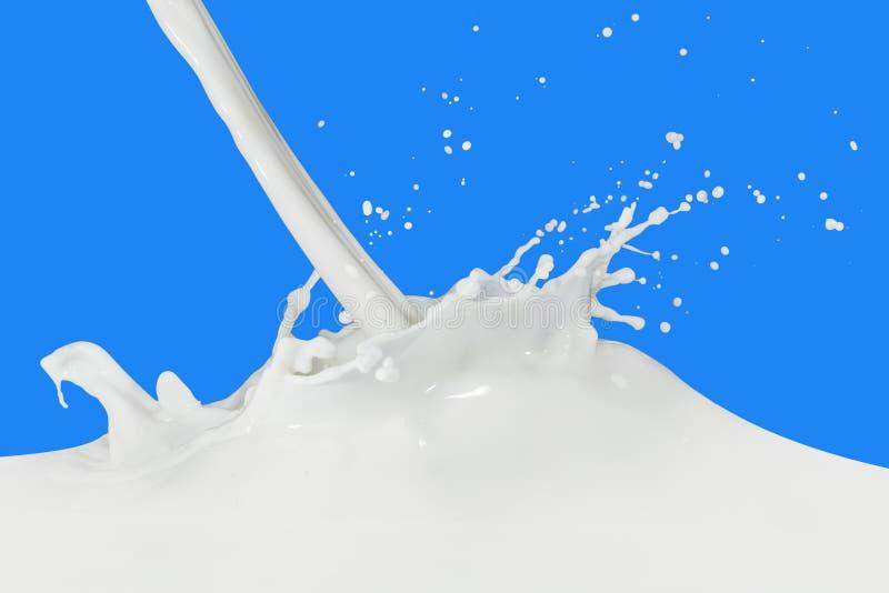 mjölka färgstänk royaltyfri fotografi