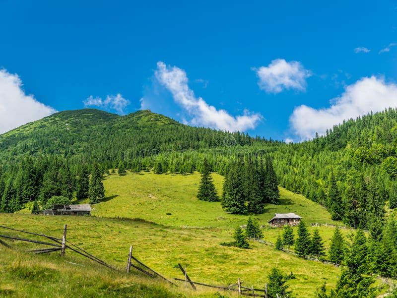 Mjölka lantgården i bergen royaltyfri bild