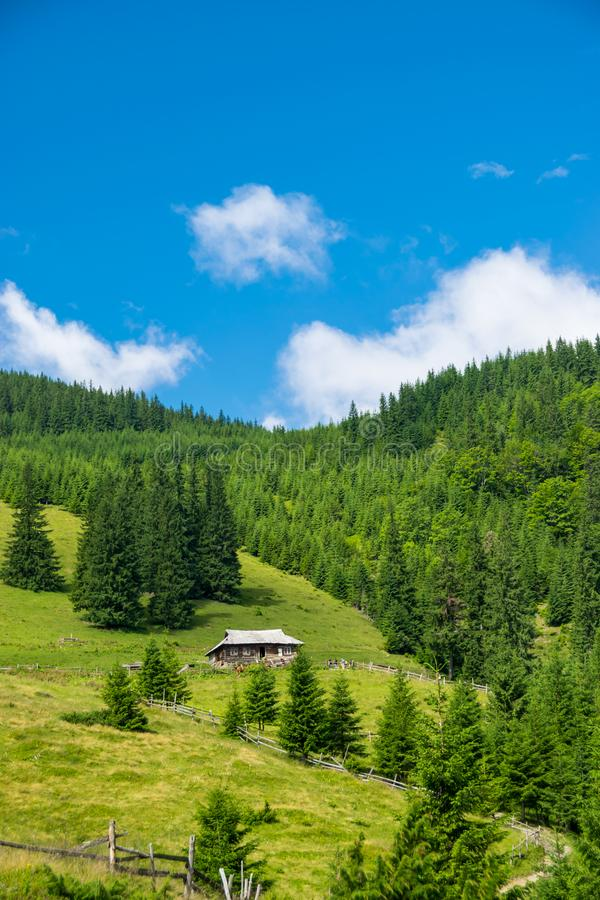 Mjölka lantgården i Carpathian berg arkivbild