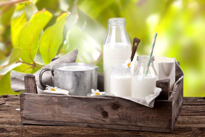 Mjölka produkter på trätabellen arkivbild