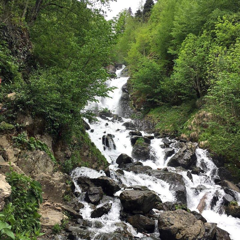 Mj?lka vattenfallet i Abchazien royaltyfri fotografi