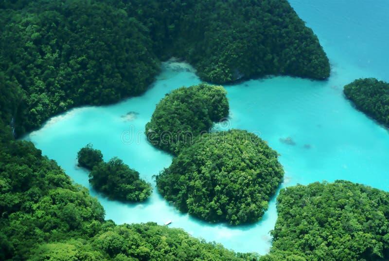 Mjölkaktig väg i Palau royaltyfria bilder