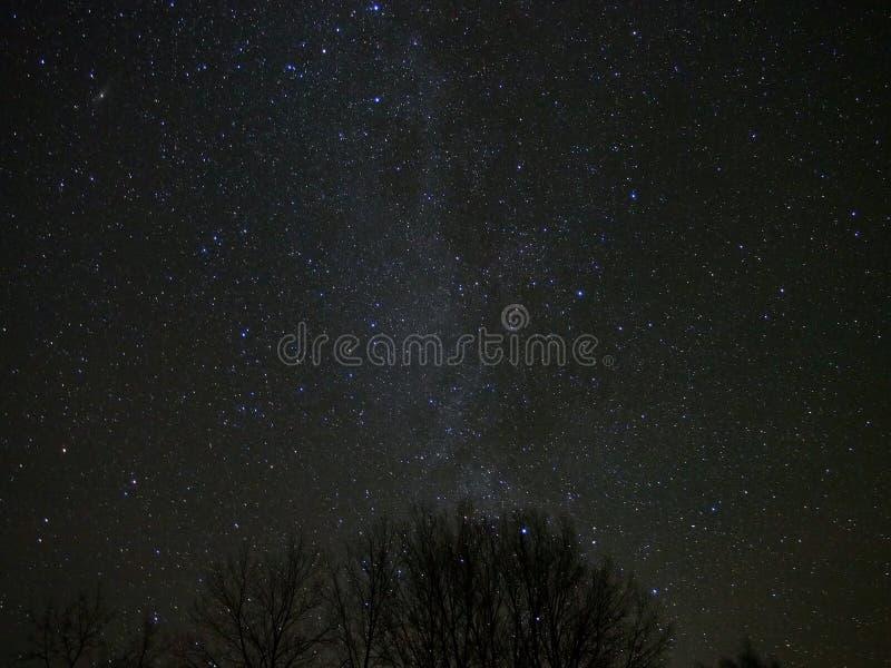 Mjölkaktig väg och stjärnor i natthimmel fotografering för bildbyråer