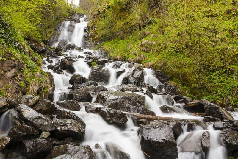 Mjölkaktig vattenfall nära sjön Ritsa royaltyfri bild