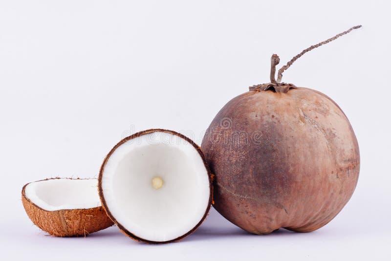 Mjölkar bryner den halva snabba banan för kokosnöten för kokosnöt och kokosnötskalet och den mogna kokosnöten på för fruktmat för arkivfoton