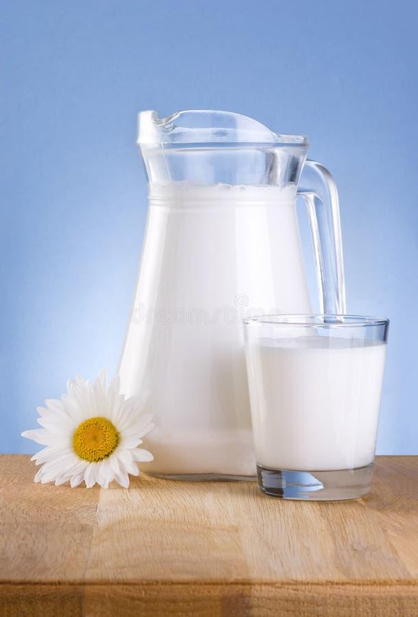 mjölkar den glass tillbringaren för chamomilen den trätabellen arkivbilder