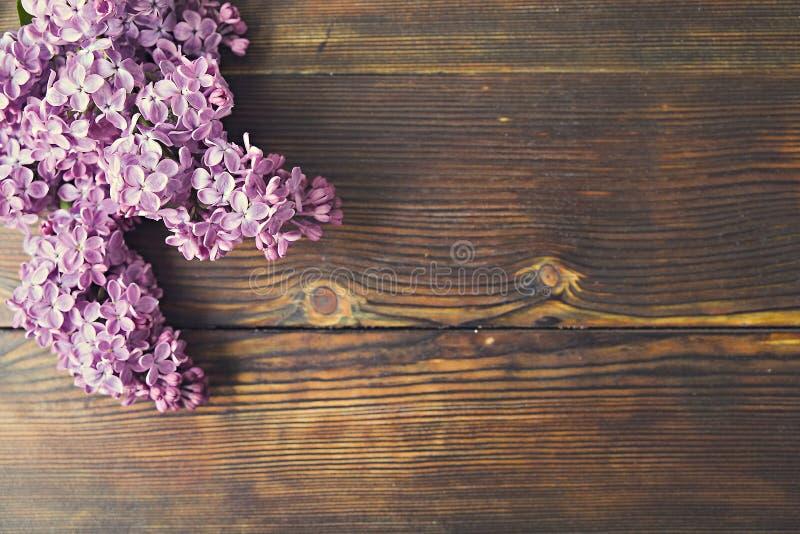 Mjuk minimalistic vårblommasammansättning på texturyttersida Härlig kvinnlig växtgarnering för feriehälsningkort royaltyfria bilder