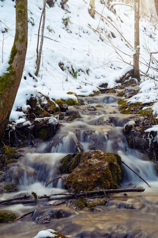 Mjuk ström av nytt bergvatten i vinterskog royaltyfria bilder