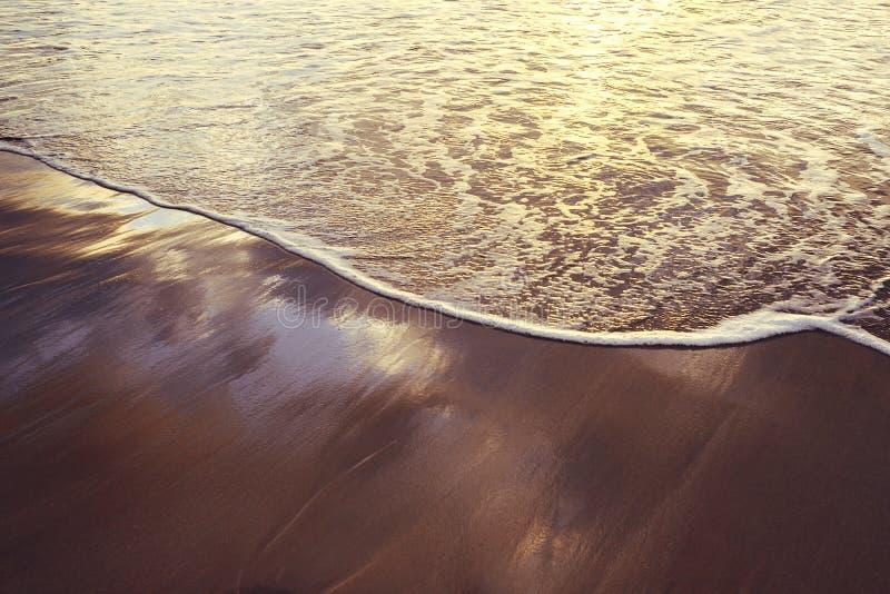 Mjuk våg på den våta sanden av kusten royaltyfri foto