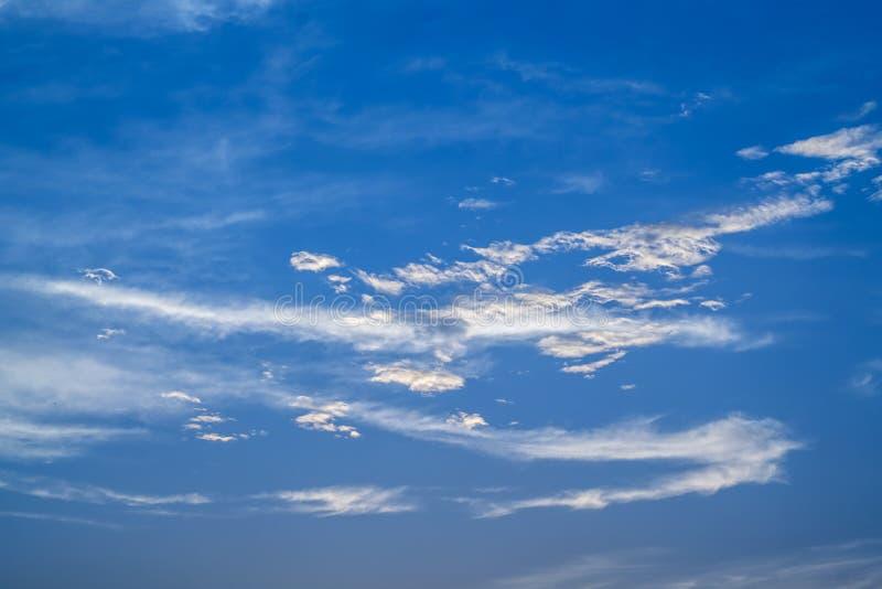 Mjuk vit f?rdunklar mot bakgrund f?r bl? himmel fotografering för bildbyråer