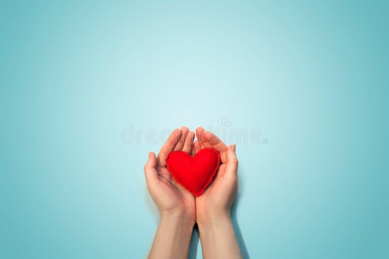 Mjuka röda Toy Heart i kvinnahänderna på ljus - blå bakgrund isolerat på vit som är selektiv fokusera Lekmanna- bästa sikt för lä royaltyfri fotografi