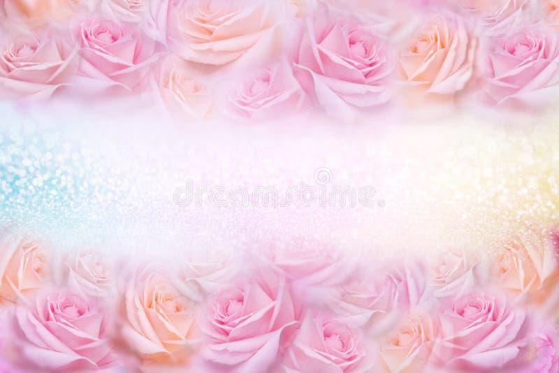 Mjuka rosa rosor blommar ramen med blänker bakgrunds- och kopieringsutrymme för text royaltyfria bilder