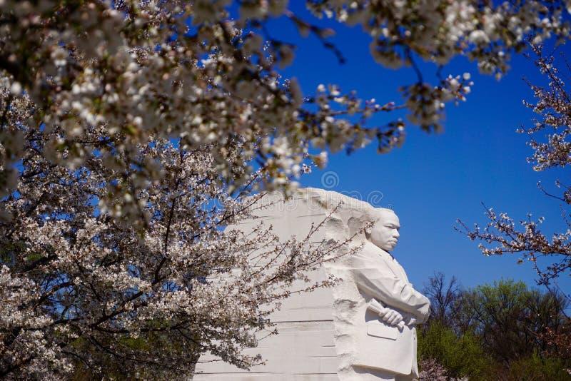 MLK-Denkmal im Frühjahr lizenzfreie stockfotografie