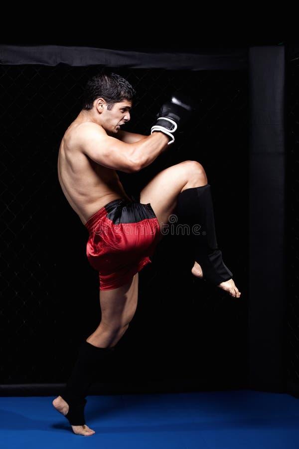 MMA lizenzfreie stockbilder