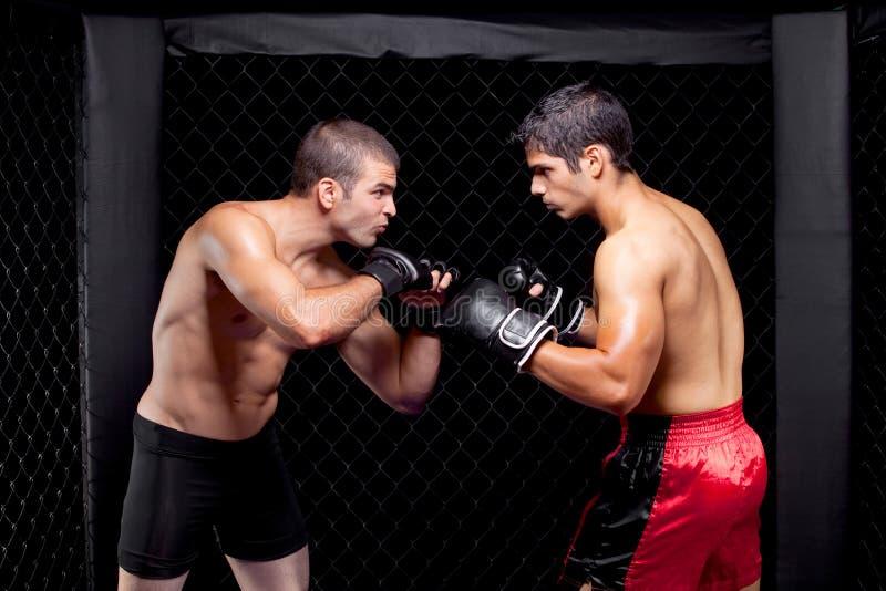 MMA fotografía de archivo libre de regalías