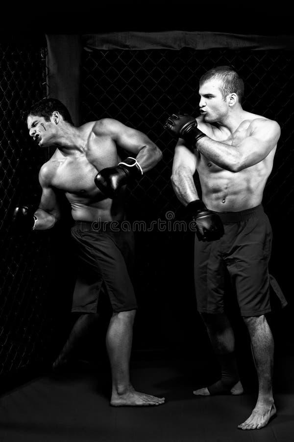 MMA photo stock